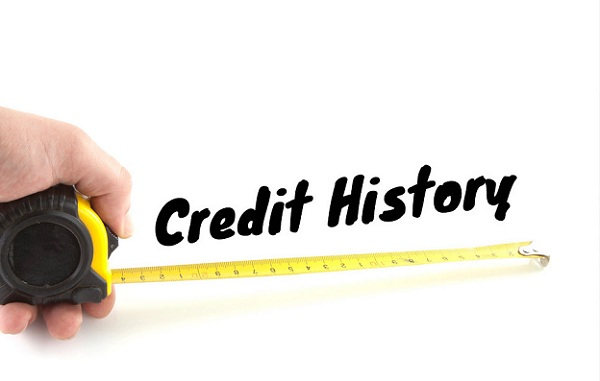Guide people to check your credit history in some minutes