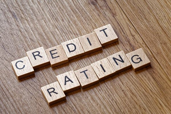 Credit rating companies